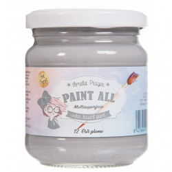 PAINT ALL 01 BLANCO - 180 ML